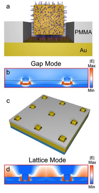Gold Nanocube Arrays