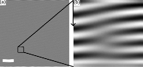 iltered atomic force microscopy (AFM) image of a shear-aligned thin film