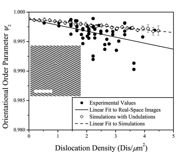 orientational order falls off linearly with dislocation density